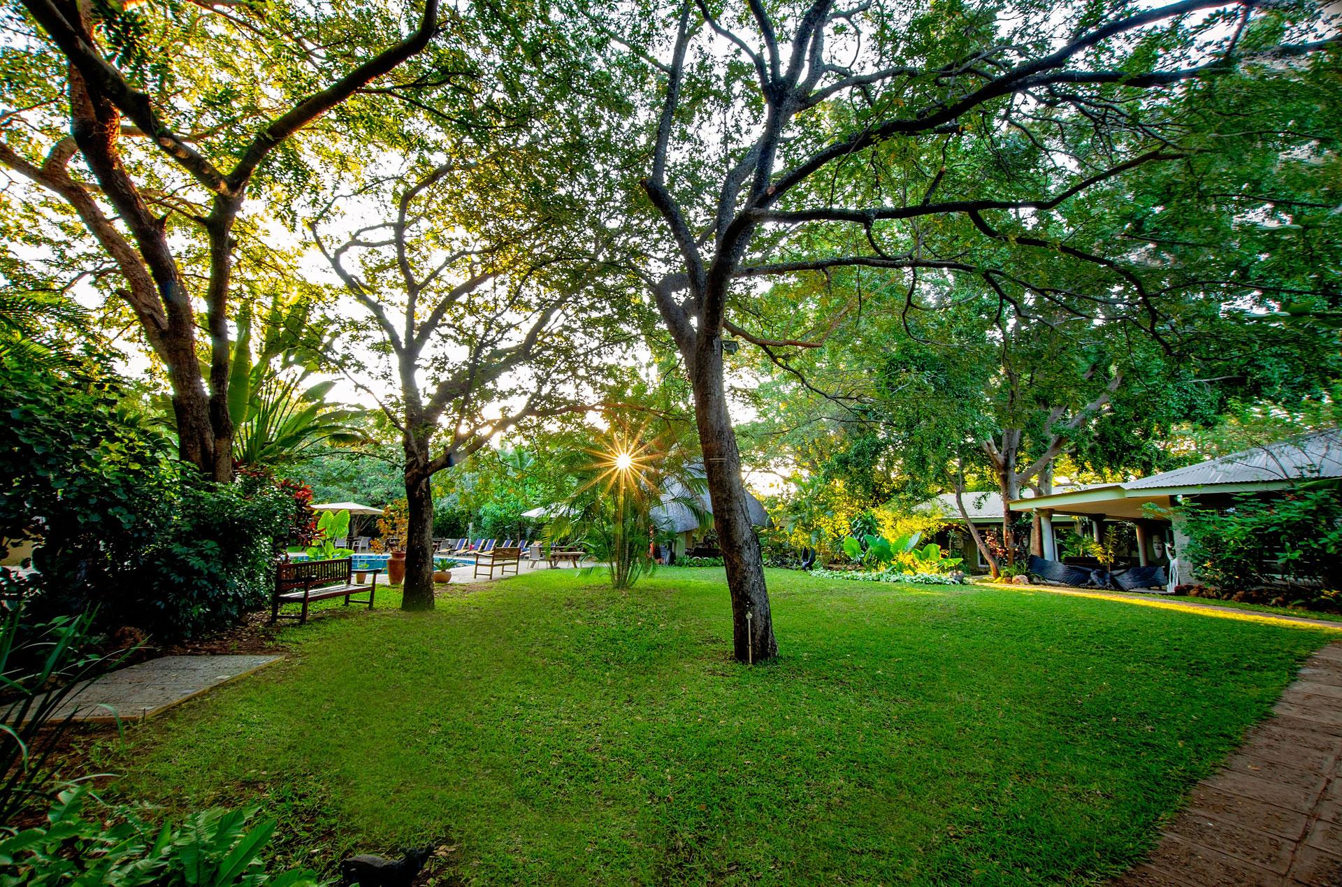 Bayete-Guest-Lodge-Gardens